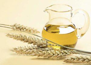 применение масла пшеничных зародышей