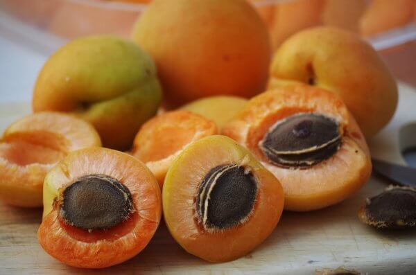 абрикосовая косточка