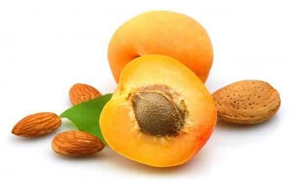 Чем полезны ядра косточек абрикоса